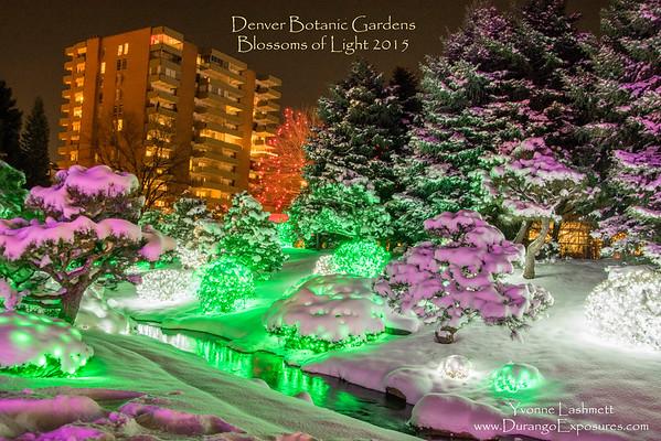 Denver scenes