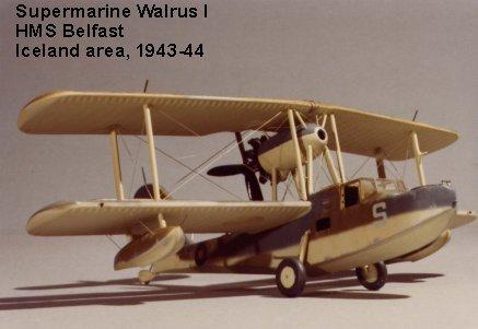 Walrus-1.jpg