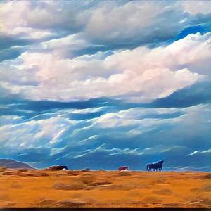 Wild Horses McCullough Peaks