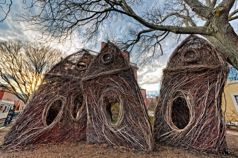 Patrick Dougherty's Stickwork.jpg