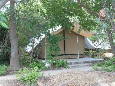 Bird Safari Camp