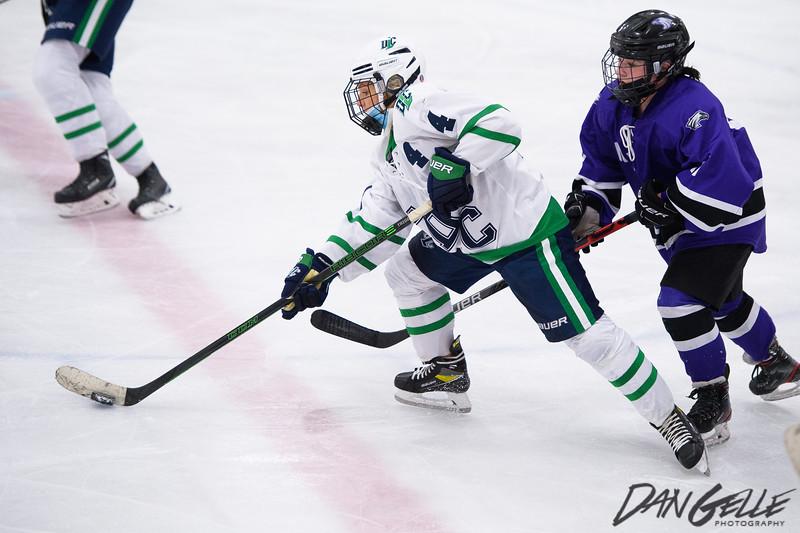 LDC Girls Hockey vs New Ulm