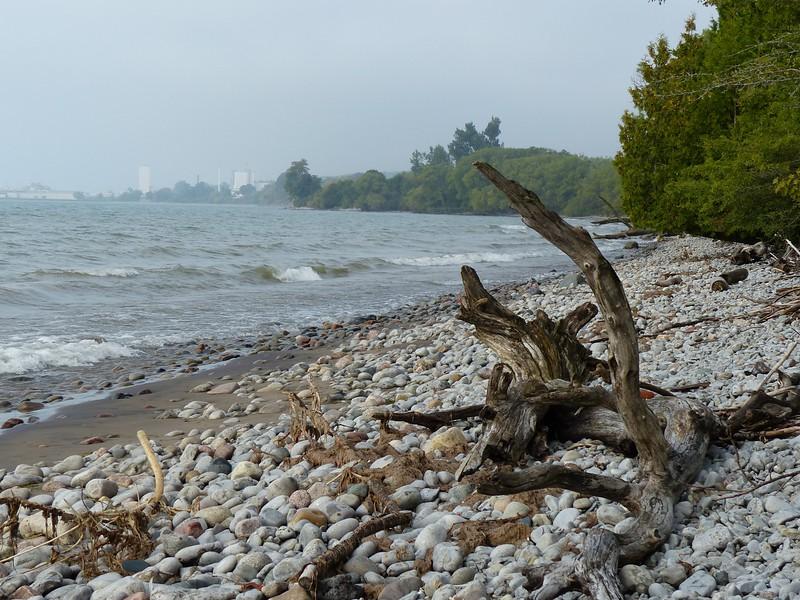 Lake Ontario shore looking toward Port Hope