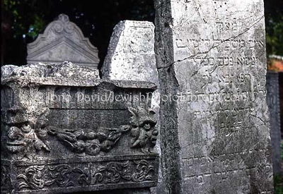 ITALY, Venice, Lido. Antico Cimitero Ebraico (Old Jewish Cemtery). (2006)