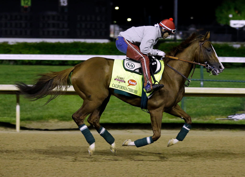. Exercise rider William Delgado takes Kentucky Derby entrant California Chrome for a morning workout during a morning workout at Churchill Downs Friday, May 2, 2014, in Louisville, Ky. (AP Photo/Morry Gash)