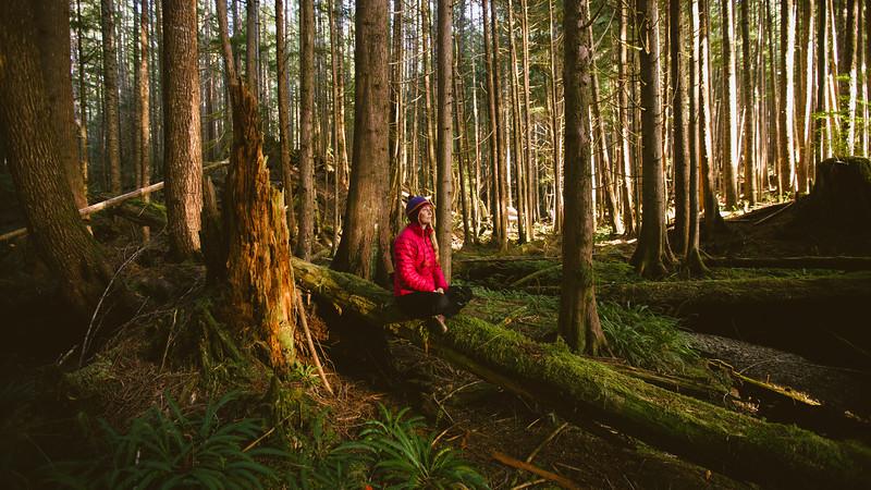 150913_Nikki_Forest_5673.jpg