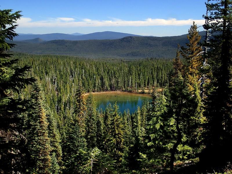 Cowhorn Mountain Deschutes National Forest Oregon