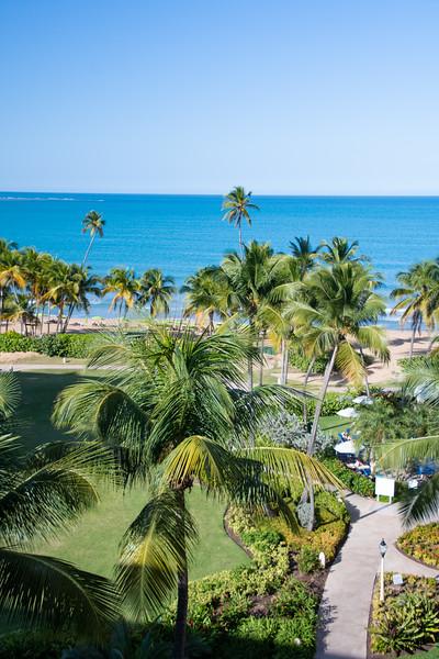 Wyndham Rio Mar - Puerto Rico - Feb., 2020