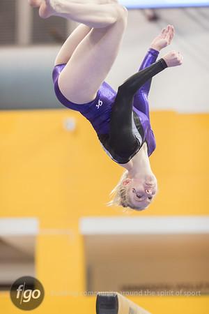 2-24-18 Minnesota State Gymnastics