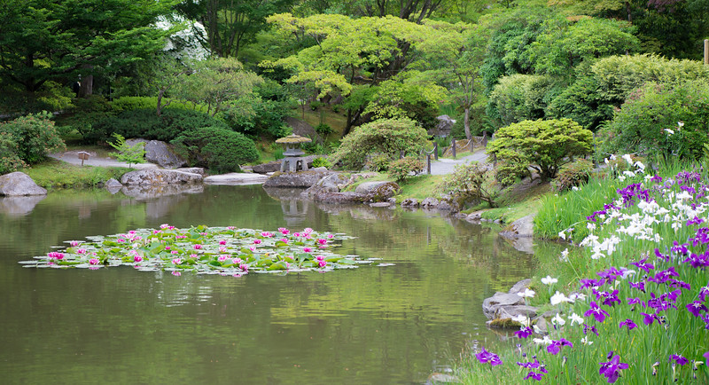 garden panor.jpg