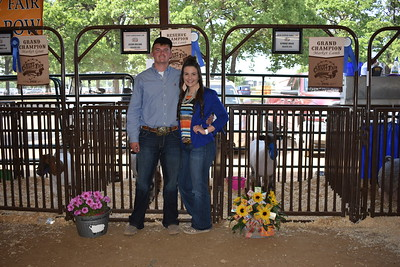 Hunt County Fair 2018: Sale of Champions
