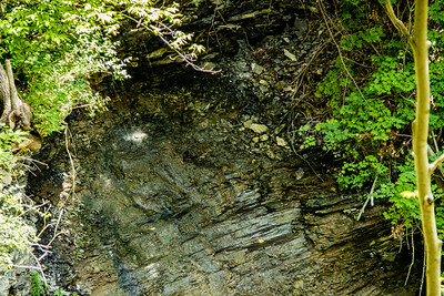 Waterfalls of WNY - Indian Fort Nature Preserve