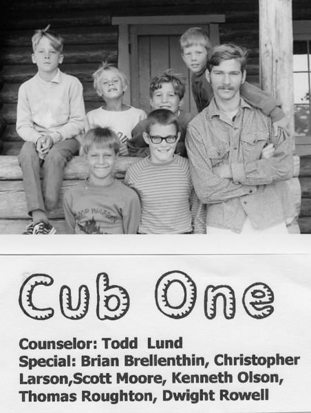 1970 Cub 1