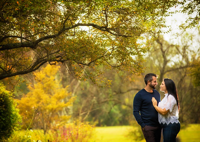 Jessica and Paul Engagement