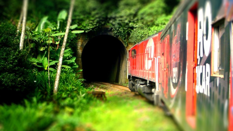 train jungle-tiltshift.jpg