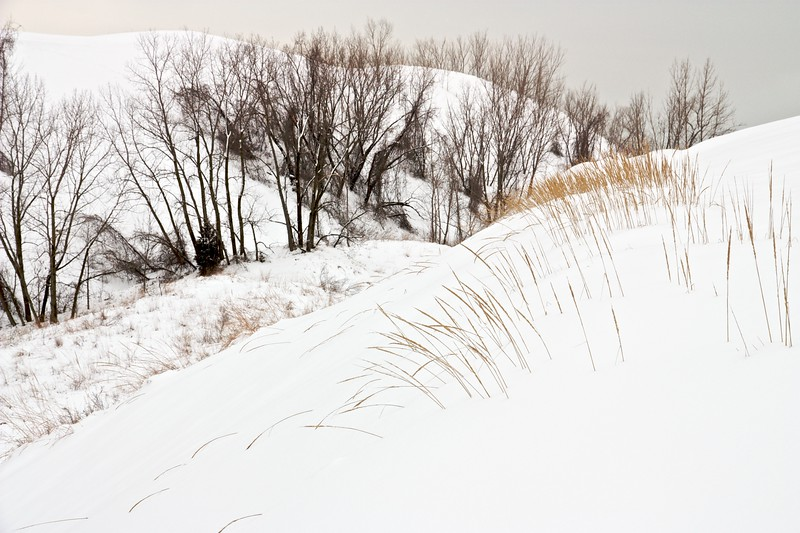 Warren Dunes State Park, Michigan in winter.