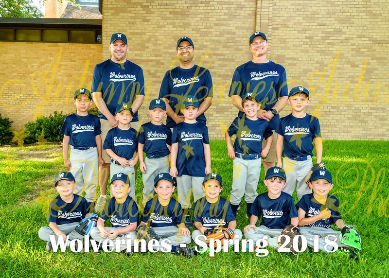 20180531 - #B1 MT Wolverines