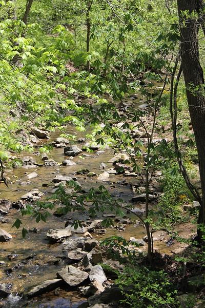 Reed Creek runs through the Gardens