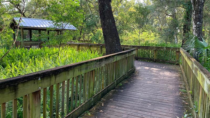 Trail shelter on boardwalk