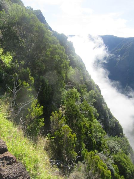 040_La Rivière des Remparts. 1000m below.JPG