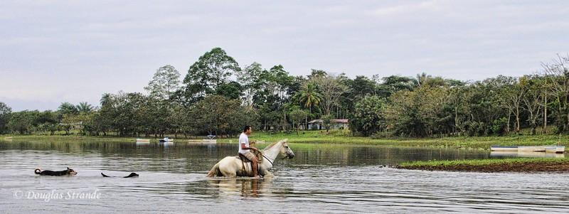 Cano Negro: river crossing