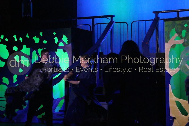 DebbieMarkhamPhoto-Opening Night Beauty and the Beast409_.JPG