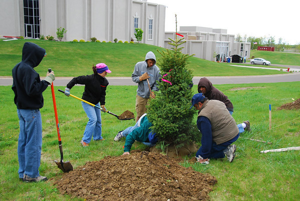 Eagle Scouts Planting Tree