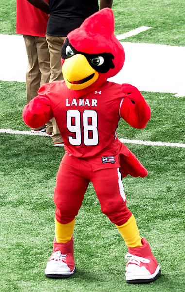 The Lamar Cardinal is determined ...