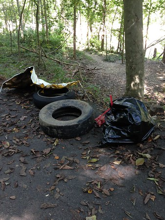 8.24.2016 Watershed Cleanup at Patapsco State Park Orange Grove Area