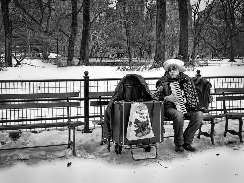 20091225-Central Park Accordian Man-155.jpg