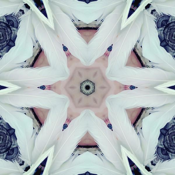 image%3A31314_mirror2.jpg