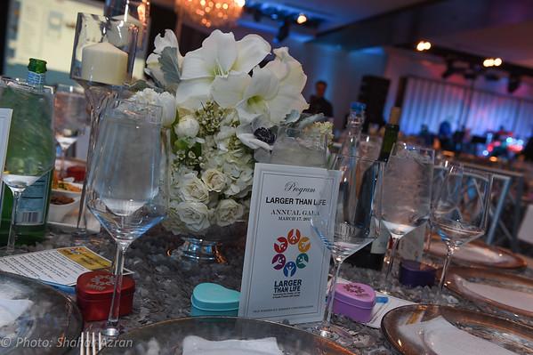 Larger Than Life - Long Island Gala 2015