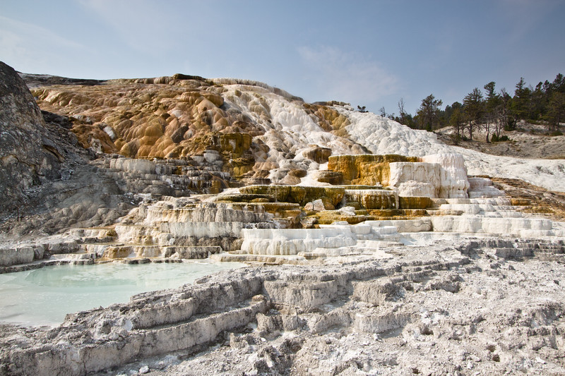 Palette Spring, Mammoth Hot Springs