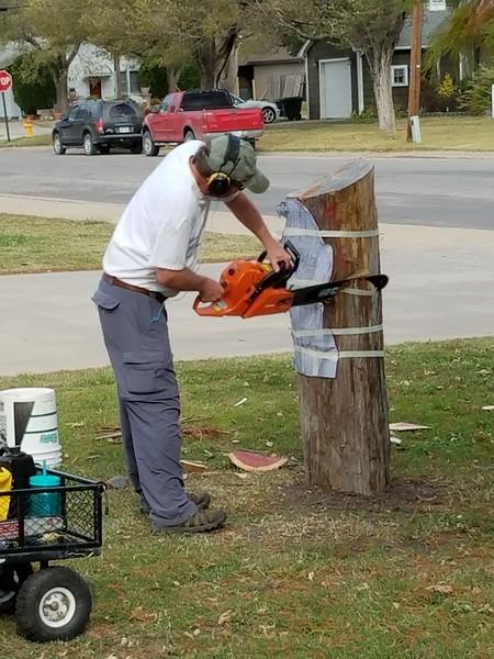 Eisenhower Eagle - Denny Leak Chainsaw Sculptor