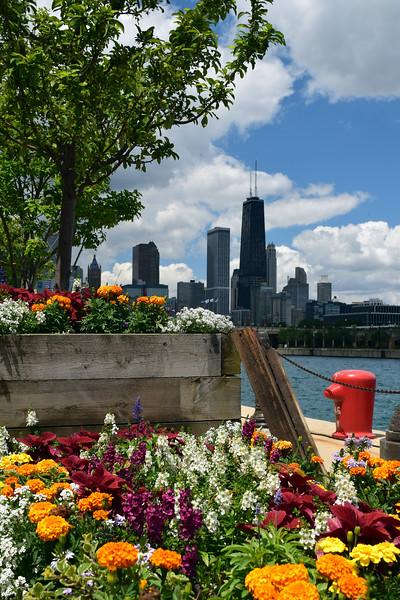 Chicago (8).jpg