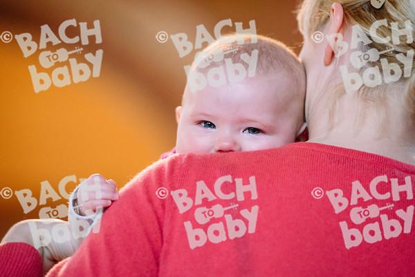 © Bach to Baby 2017_Alejandro Tamagno_West Dulwich_2017-03-24 023.jpg
