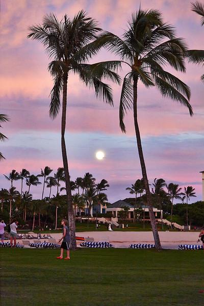 Hawaii-IMG_3224_.jpg