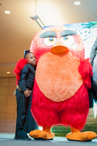 Angry Birds StoneCrest Mall 107.jpg