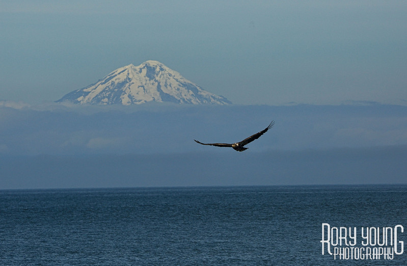 Alaska0234.jpg