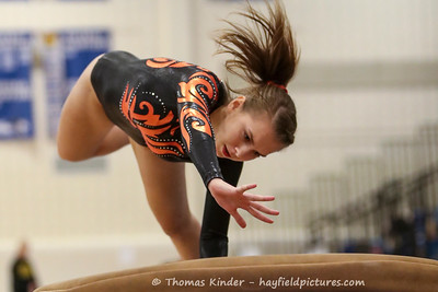 Gymnastics at Fairfax HS 12/3/16