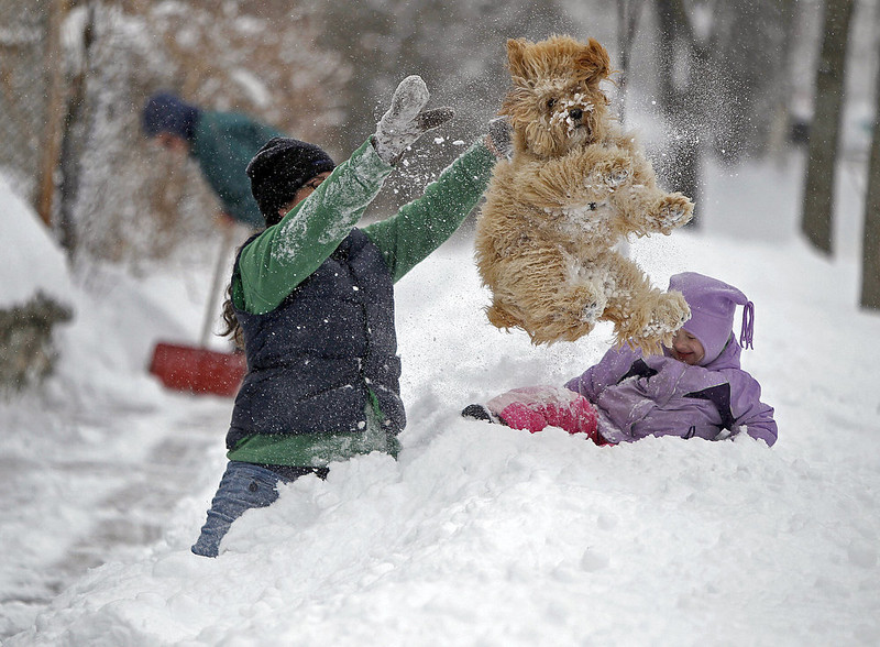 . Lindsay Knutson, left, plays in the heavy snow with her family dog, Aspen, and daughter Flora Bejblik, 4, as her husband Bob Bejblik, rear left, shovels snow on Tuesday, March 5, 2013 in southwest Minneapolis. The National Weather Service predicted a two-day snow total of 8 to 12 inches for much of southeastern and east-central Minnesota, including the Twin Cities.  (AP Photo/The Star Tribune, Elizabeth Flores)