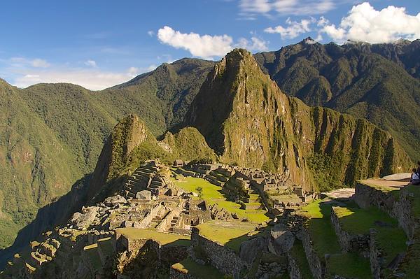 South America: 2008-2009