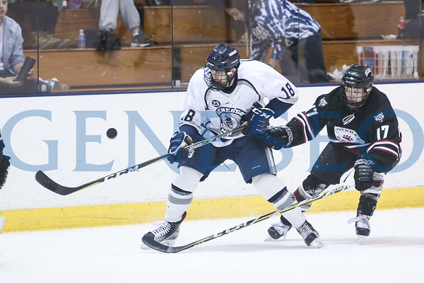 Ice Hockey vs. Potsdam (Photos by Ben Gajewski)