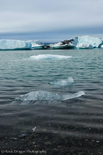iceland_south-68.jpg