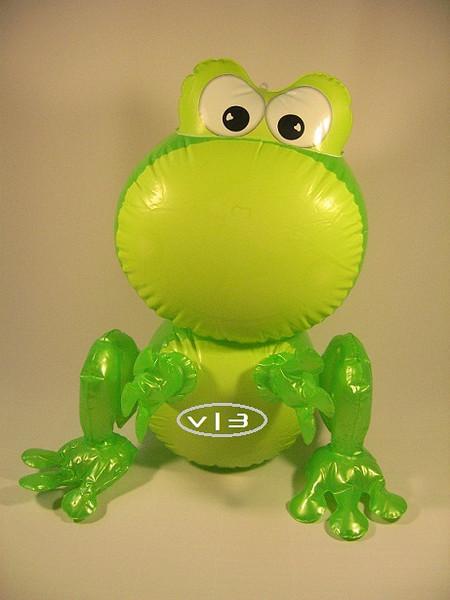 IF- ANIMAL- Frog GR.JPG