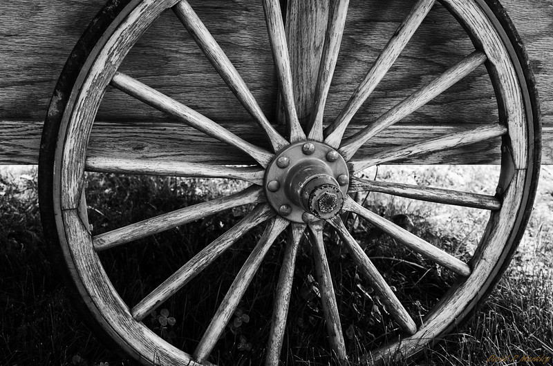 Thin Wheel
