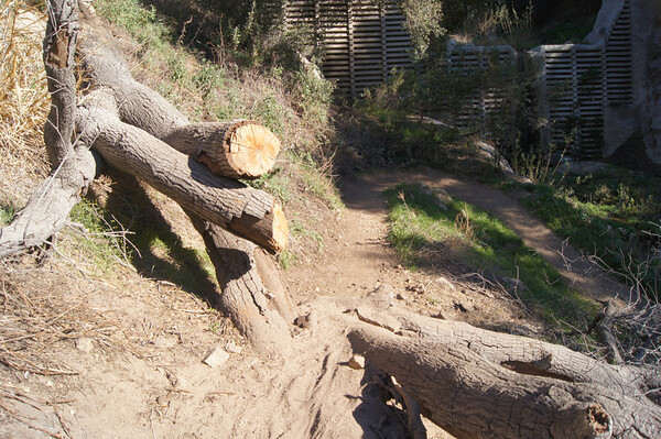 2012-01-13 - El Prieto Trailwork Preparation (before)