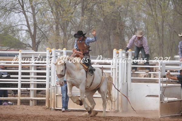 Perf Saddle Bronc