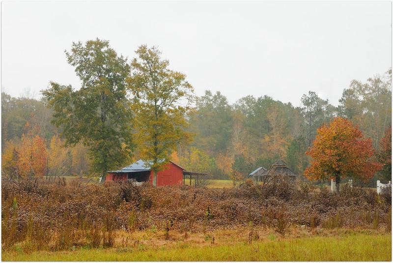 Still rainy and overcast.<br /> <br /> Wagarville, Alabama