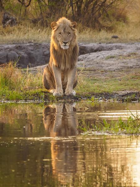 Botswana 2016-00237.jpg